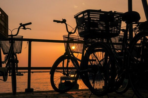 baskets and trunks on bicycles