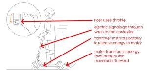 How Do Electric Scooters Work (What You Must Know As An Owner)