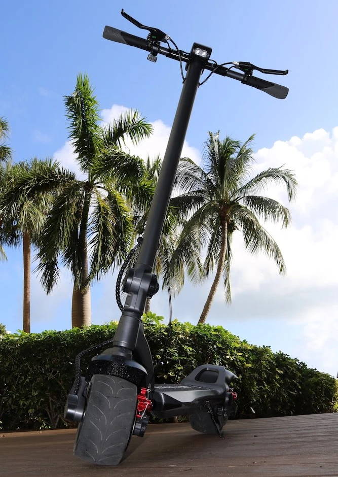 a Mercane WideWheel Pro leaning with palms in the background